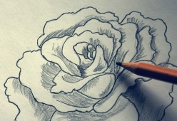 670px-Shade-a-Flower-Rose-when-Drawing-With-a-Graphite-Pencil-Step-1