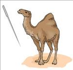 camelneedle